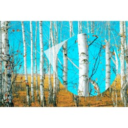 Decorative Mural Trees and Blue Sky