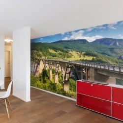 Wall mural old bridge in Durdevica