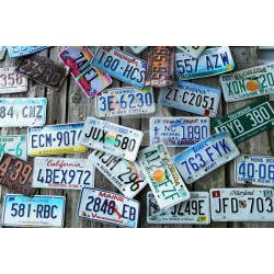 Wall mural United States license plates